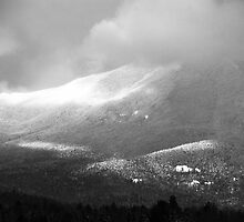 Whiteface by John Schneider