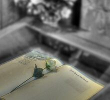 Book of Remembrance by Kim Slater