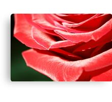 Red Layers Canvas Print