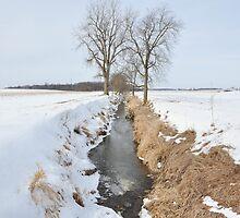 A winter creek in Selma by mltrue