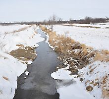 Another Selma Creek in January by mltrue