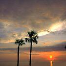 Apalachicola Bay Sunset by WTBird