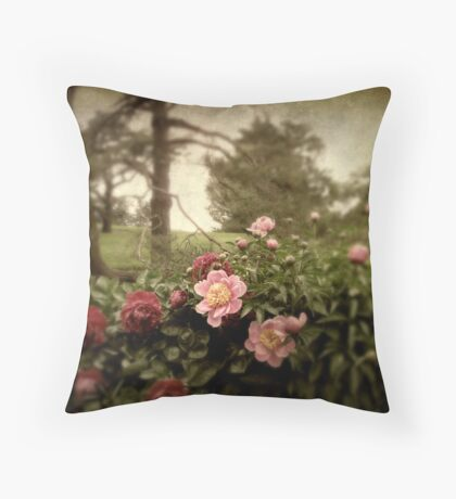 Peony Park Throw Pillow