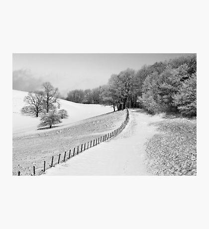 A Winter Walk Photographic Print