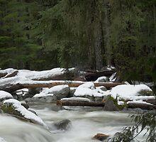 Wintery River by Michi Fana