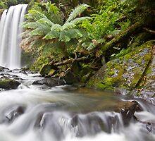 Hopetoun Falls, Otway Ranges, Victoria by Glen Barton