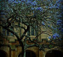 Bluesom by CharKie