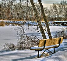 Winter Serenity by ECH52