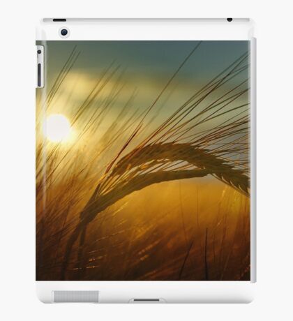 Sunset crop iPad Case/Skin