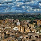View over Siena, Florence by safariboy