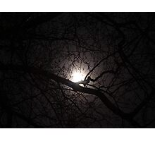 Winter Moon Photographic Print