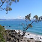 Beautiful Byron Bay! North Coast N.S.W. by Rita Blom