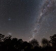 Milky Way From The Backyard by Natalie Ord