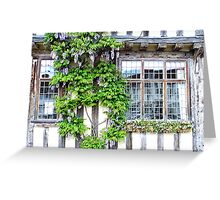 Window with a touch of flowers Greeting Card