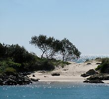 Brunswick Heads NSW Australia 3 by allespostcards
