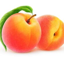 Two fresh peaches by 6hands