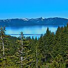 Lake Tahoe by Phillip M. Burrow