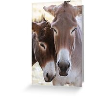 donkey in the farm Greeting Card