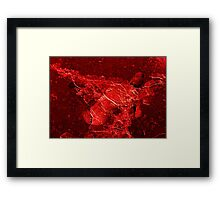 Red death Framed Print