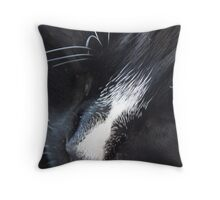 Mojo - The Cat's Whiskers Throw Pillow
