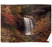 Looking Glass Falls in Pisgah National Forest, NC Poster