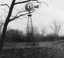 Wind by Erica Gulliver