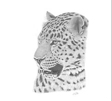 The Watchful Leopard Photographic Print