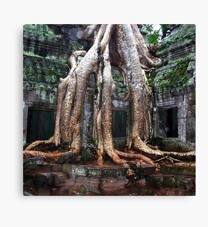 Temple Roots Canvas Print