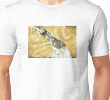 Triumphant Punch Unisex T-Shirt