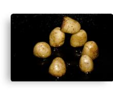 Potato Henge Canvas Print
