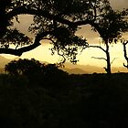 sunset kruger part 2 by petraE