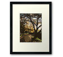 nature's alleyway vector Framed Print