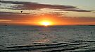 St Kilda Sunset by Paige