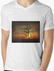 Alda Mens V-Neck T-Shirt
