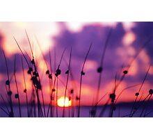 Doon sunset Photographic Print