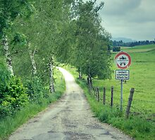Mystery at the End of a Bavarian Road by Adam Olson