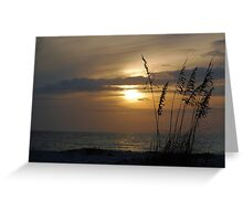 Sunset through sea oats Greeting Card