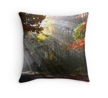 Morning sun rays on a foggy day Throw Pillow