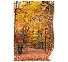 Scenic autumn landscape Poster