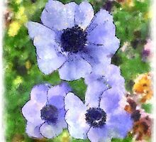 Blue Astors by Kenneth Hoffman