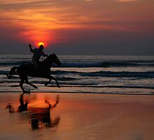gallop at sunset by morrbyte