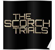 Maze Runner The Scorch Trials Movie Poster