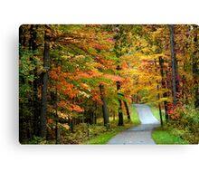 Autumn bike trail Canvas Print
