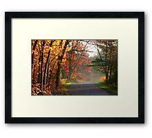 Scenic autumn road Framed Print
