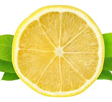 Lemon slice with leaves by 6hands