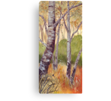 Trees On The Common Canvas Print