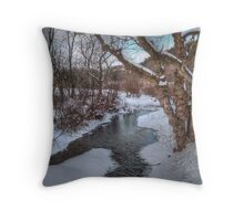 Winter's Landscape Throw Pillow