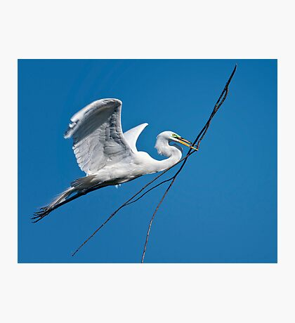 Oversize Air Delivery II Photographic Print