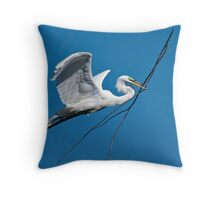 Oversize Air Delivery II Throw Pillow