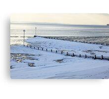 The freezing sea. Canvas Print